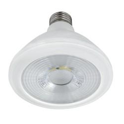 Bec Spot LED PAR30 10W